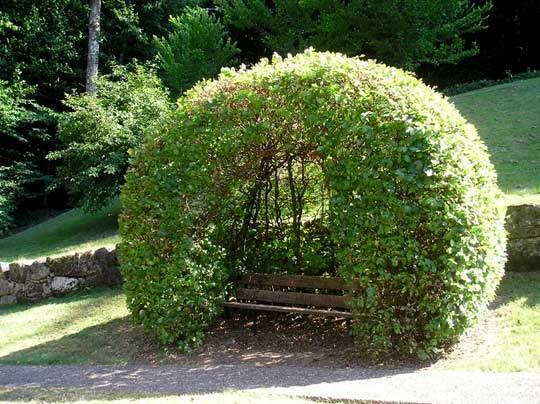 Садовая лавочка