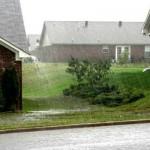 Дождевая вода в саду