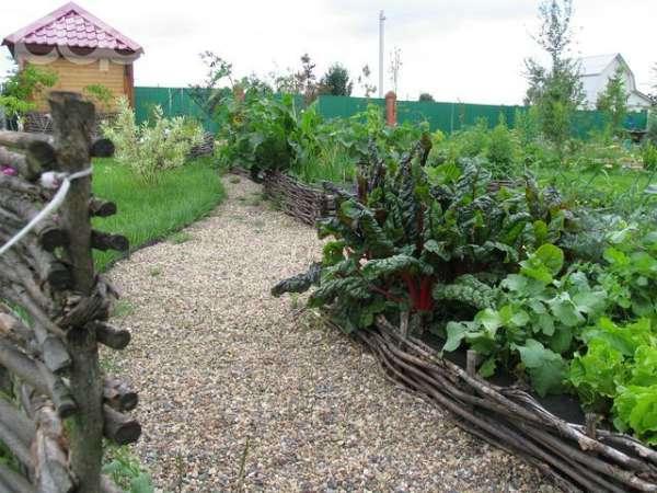 Некоторые огородники выращивают овощи на грядках.  Делать грядки высокими в наших условиях нецелесообразно, так как...