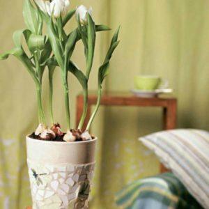 Как украсить цветочный горшок?