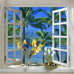 Деревянные окна — вся правда