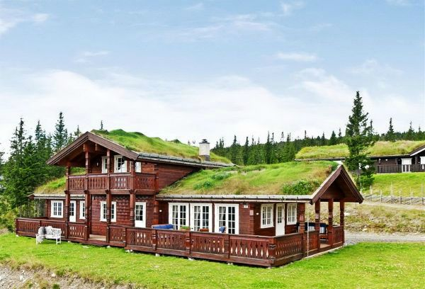 Крыша сад или дом с газоном на крыше