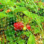 Агроволокно, агроткань и пластиковые сетки для обустройства частного дома