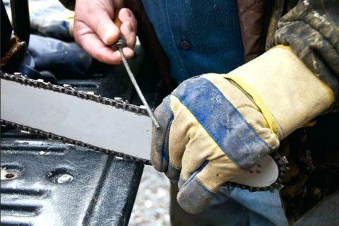 Масло и смазки для бензопилы — для компрессора или редуктора цепной пилы