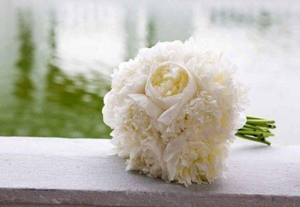 Доставка цветов в Алматы. Пионы нежные, очень красивые цветы
