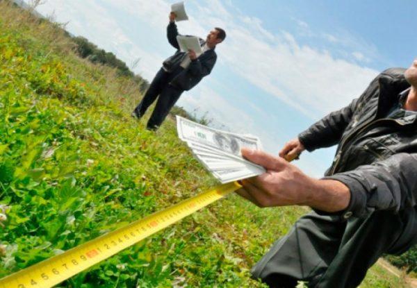 Как проверить земельный участок?