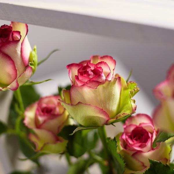 Цветы с доставкой в Мытищи